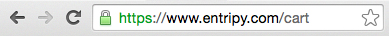 URL address bar showing the padlock symbol, indicating the site is secure to input personal information.
